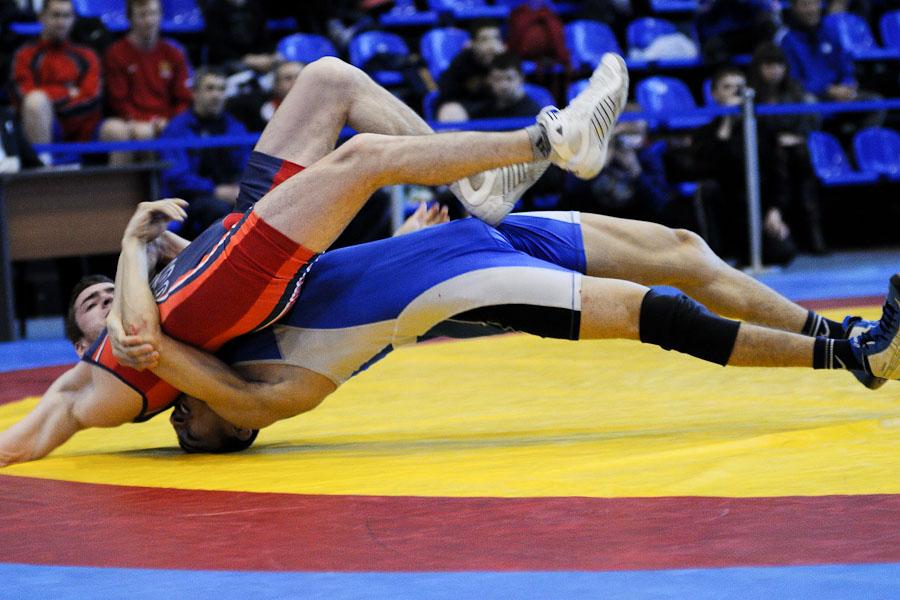 Чемпионат России по вольной борьбе во Владимире
